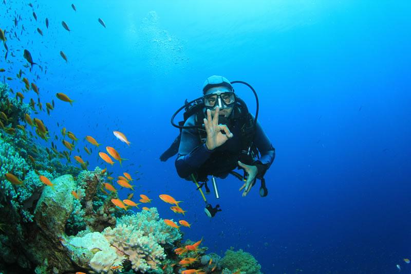 via-del-mare-villasimius-diving