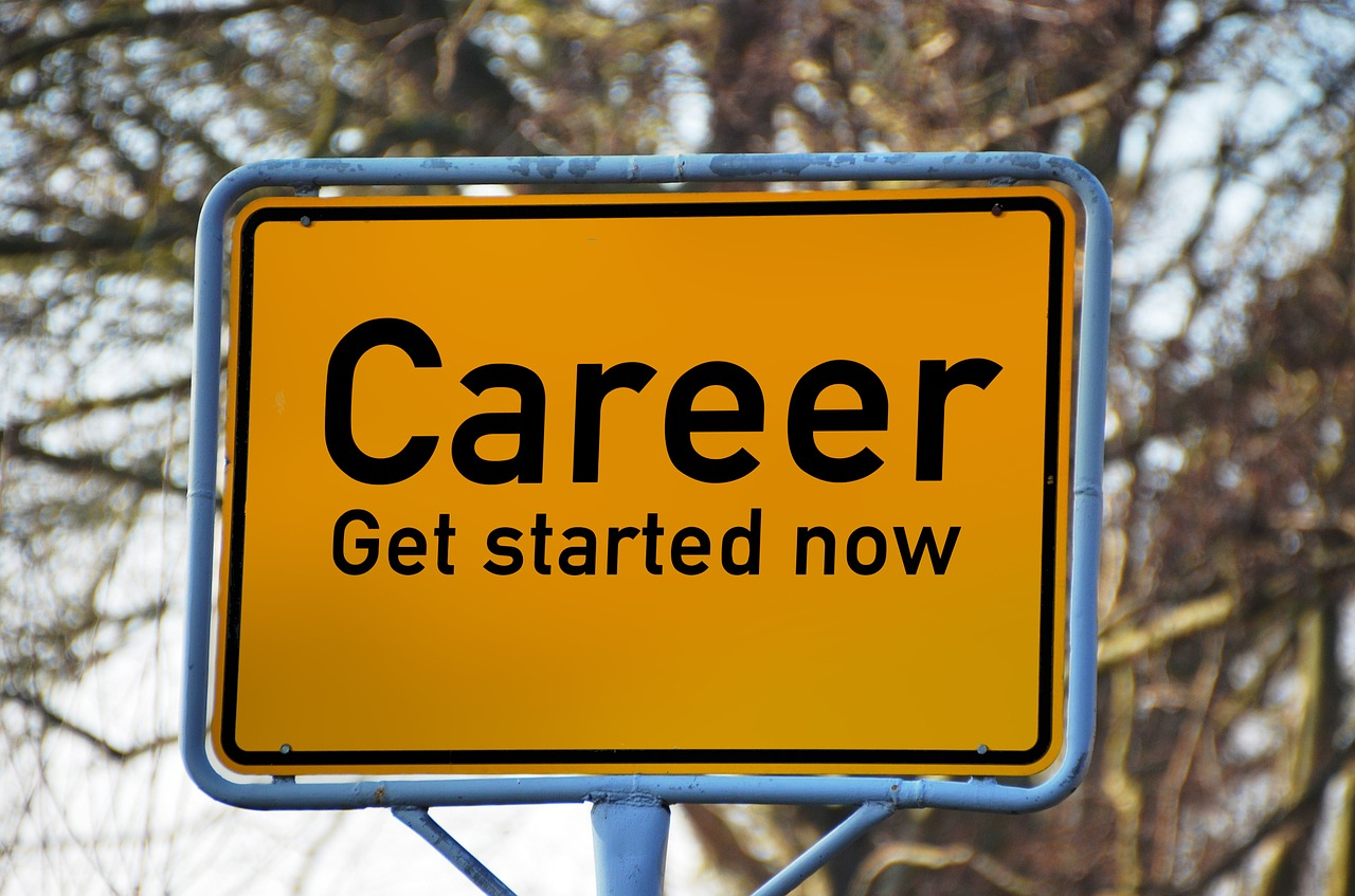career curriculum