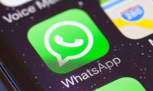 spunta verde di whatsapp cosa significa