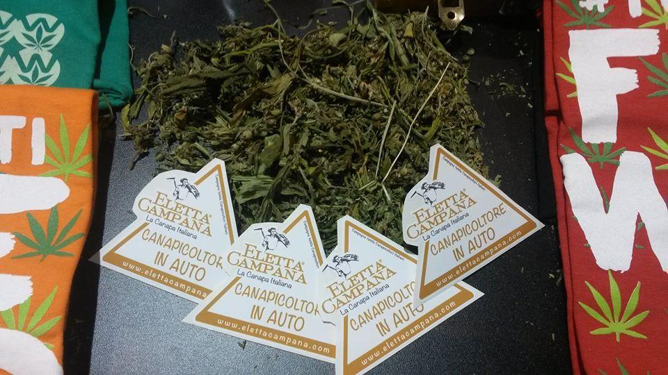 marijuana_legale