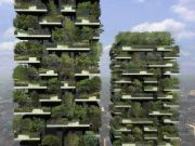 città-foresta-3.jpg