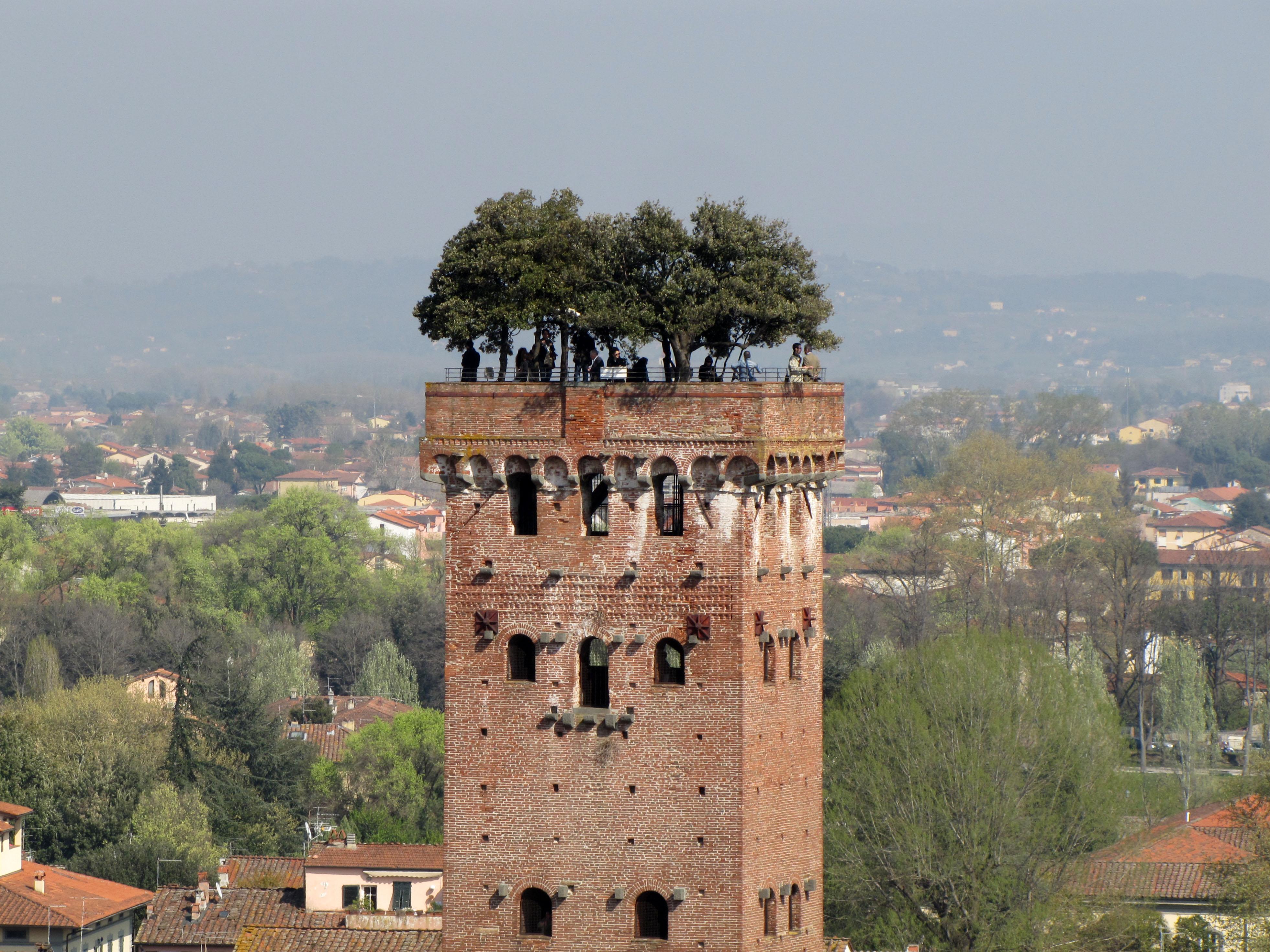 Torre Guinigi di Lucca
