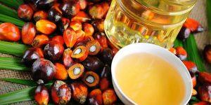 Meno olio di palma