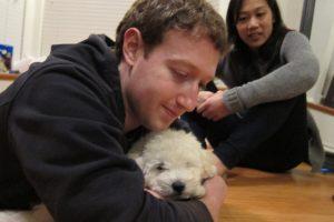 i cuccioli della Silicon Valley fanno bene al lavoro