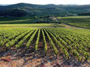 agricoltura innovativa gli espositori ad agrilevante 2017