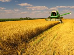 pluralismo agricolo per salvare l'Italia