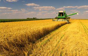 pluralismo agricolo per il futuro dell