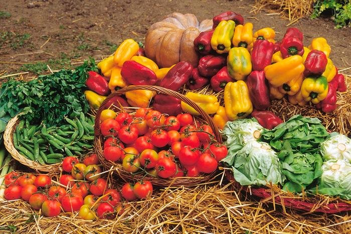 pluralismo agricolo per il futuro dell'italia