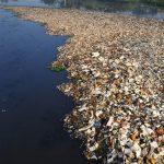 oceani inquinati