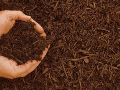 compost-fertilizzante