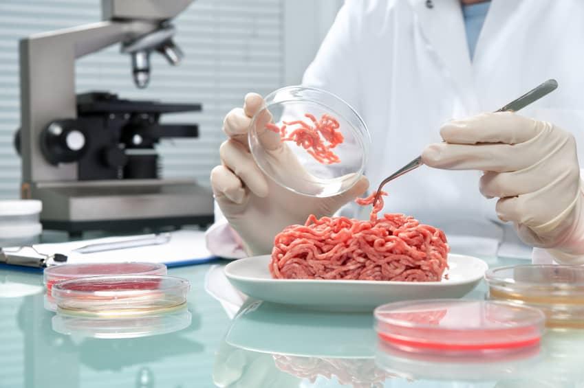 carne-prodotta-in-laboratorio