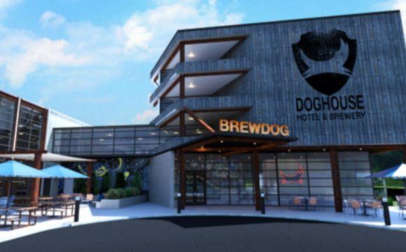 brewdog-hotel