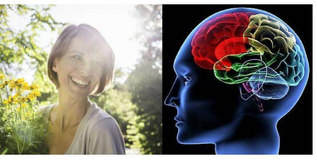 felicità-neuroscienze