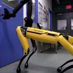 cane-Robot