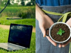 5 idee di business ecologici