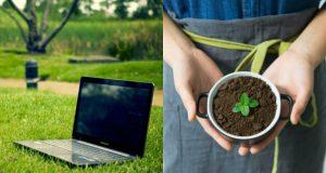 5 idee di business ecologici