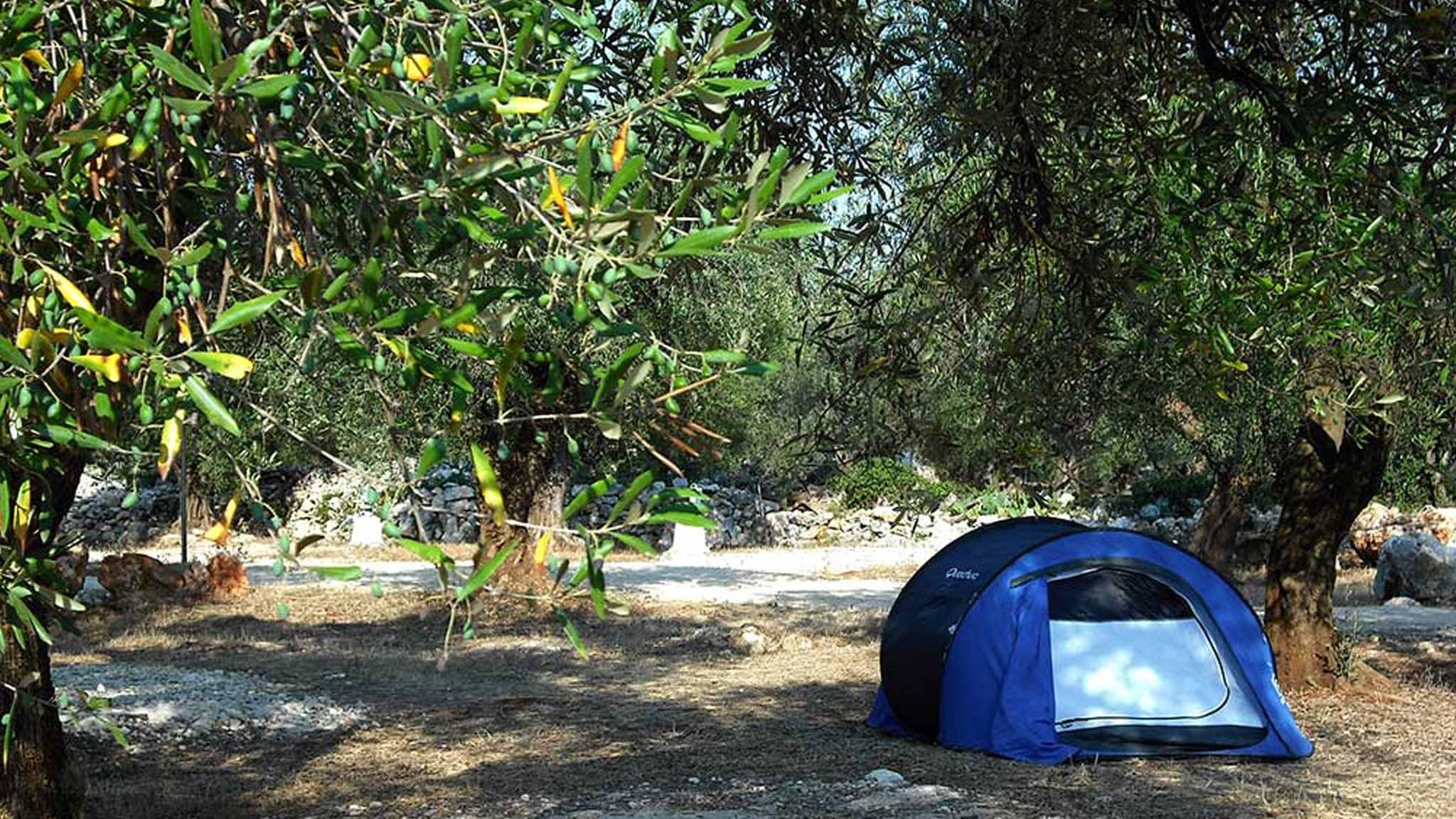 garden_sharing_campeggio_