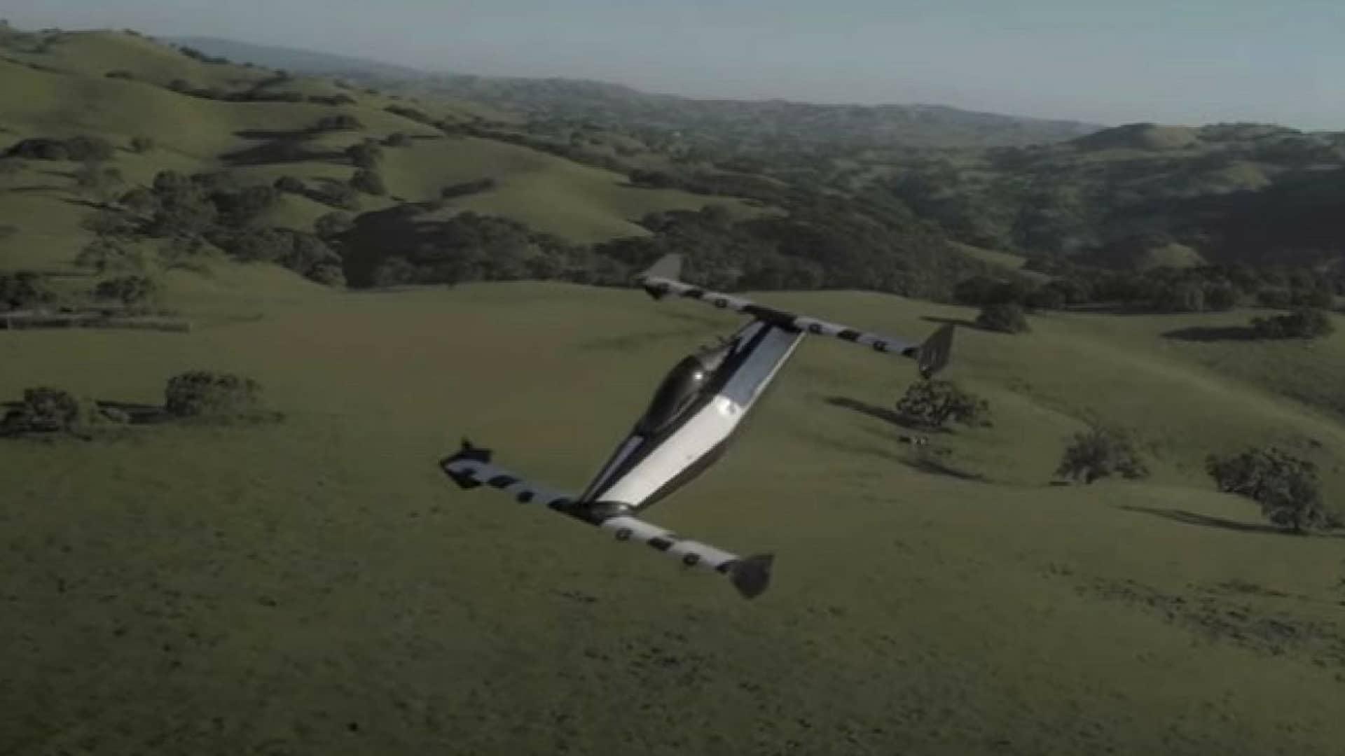 blackfly-auto-volante