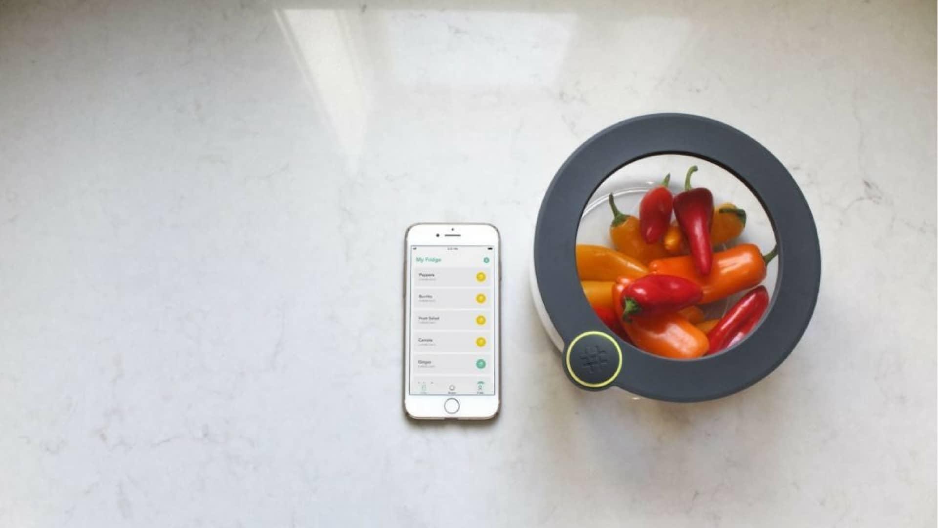 ovie-startup-alimentare