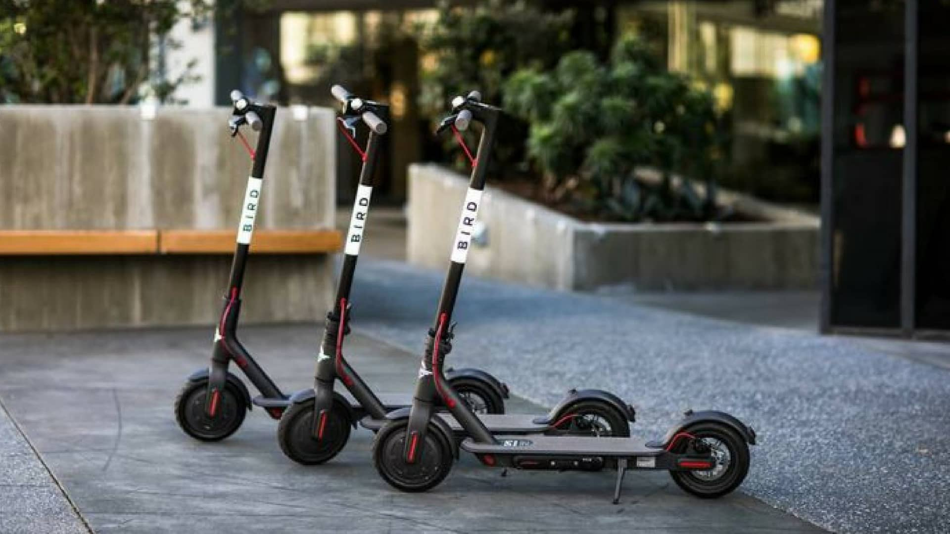 bird-startup-scooter-elettrici
