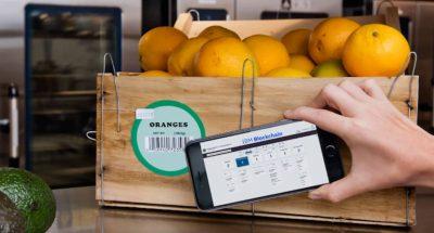 blockchain-agroalimentare-innovazione