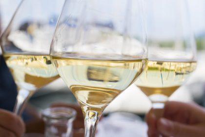Nasce WineTales Magazine, il portale del Vino Italiano